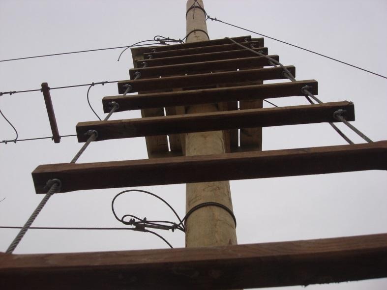 Строительство веревочного парка (4)